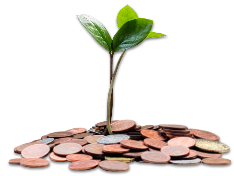 Connect Lease funding solutions help businesses grow